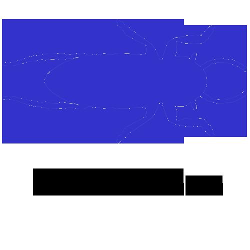 Family Ampullariidae Family Ampullariidae