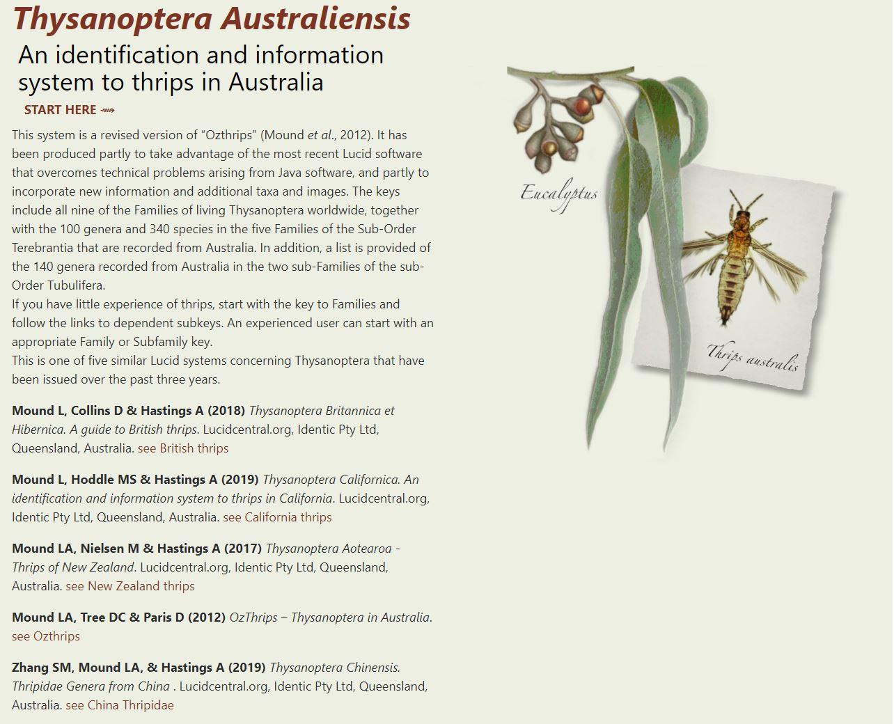 Thysanoptera Australiensis Key Search